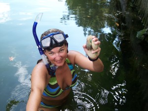 Homosassa Scalloping