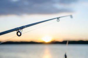 Crystal River flats fishing vacation