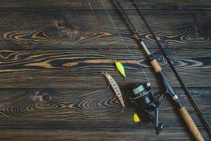 Florida Snook fishing