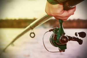 Florida grouper fishing charters