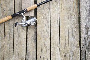 Homosassa fishing guide