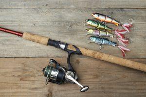 Homosassa mackerel fishing