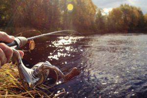 experienced Florida fishing guide